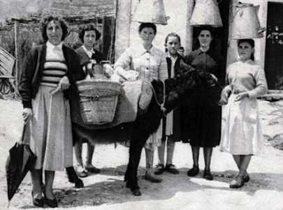 Leiteiras de Santa María de Xeve e Verducido, 1950.