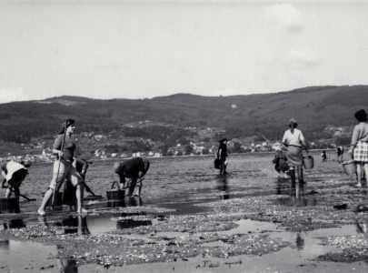 Mariscadoras en Lourizán