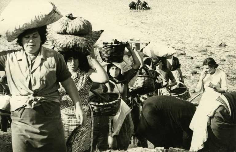 Mulleres volvendo de mariscar