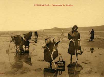 Mariscadoras en Pontevedra