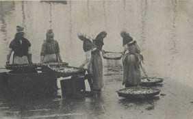 Mulleres de Marín lavando o peixe