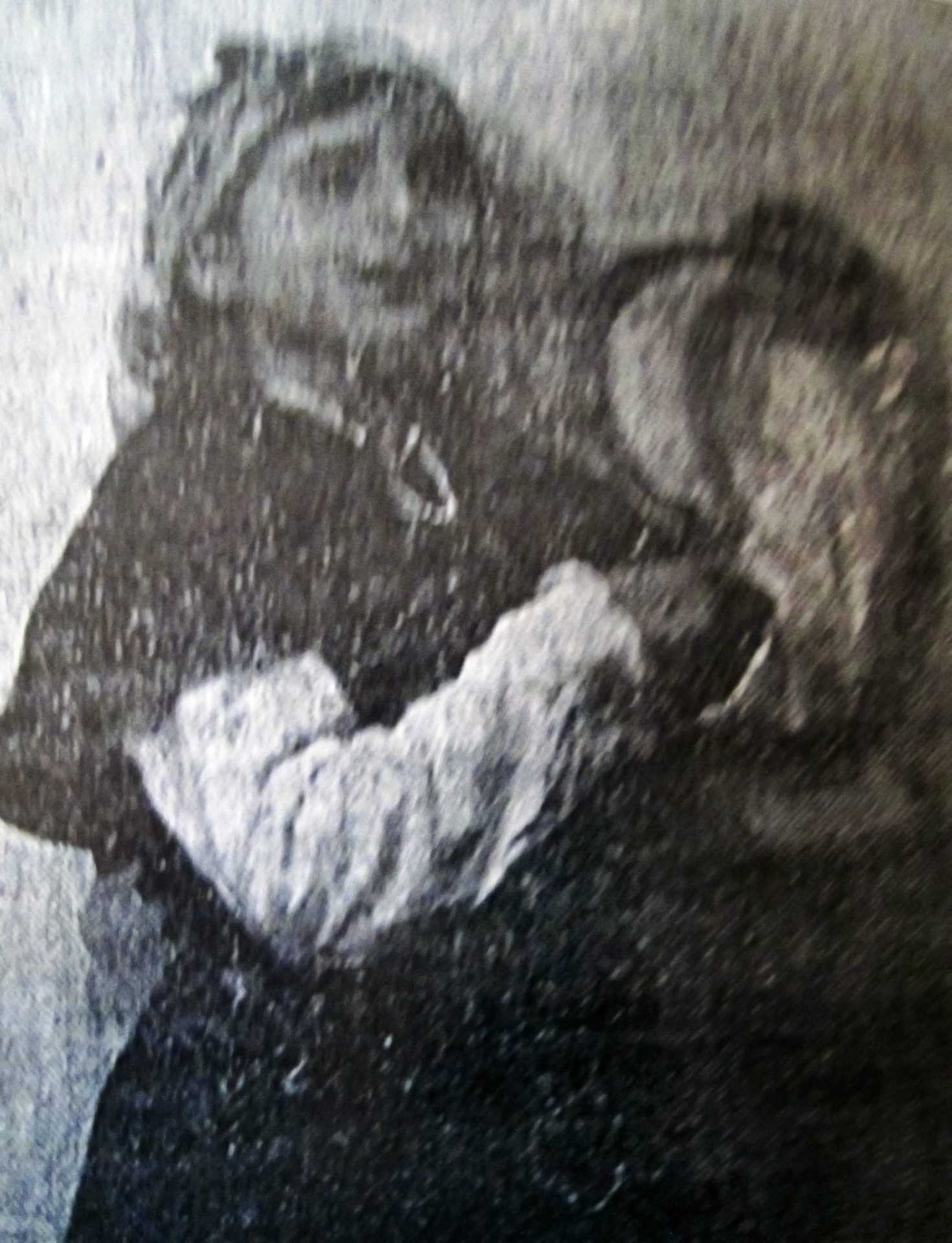 Pilar Bértola